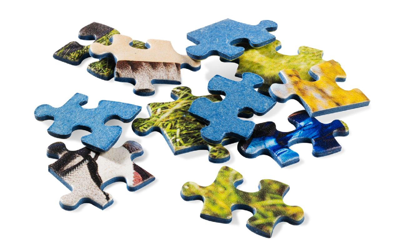 Puzzle firmy Ravensburger